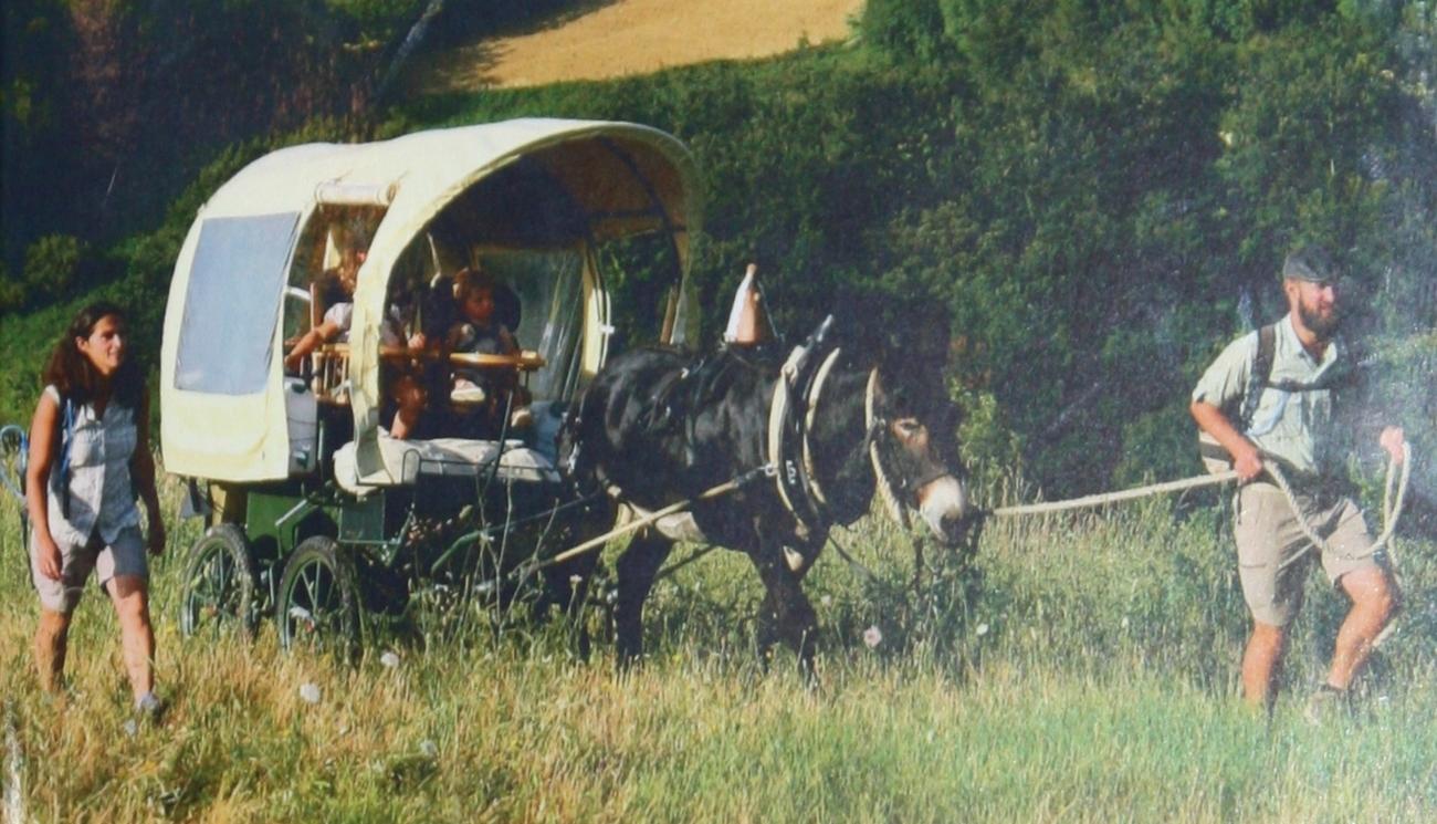 Il était une voie: une famille, un âne, un rêve ... 1300 km à pieds vers Rome