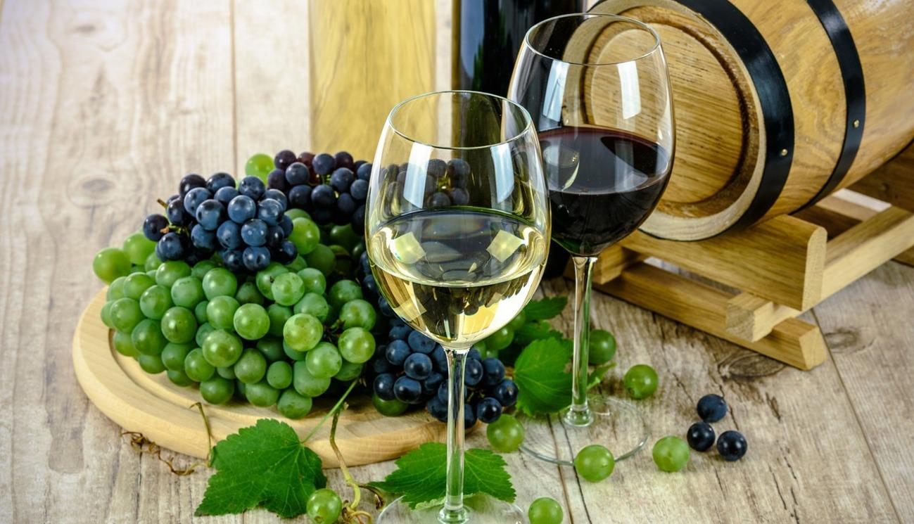 Histoire de la vigne et du vin, l'âme du vin (1/8)